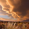 Eastern Sierra, Owens Valley, Mono Lake &amp; Great Basin Desert : Photographs from the Eastern Sierra, Owens Valley, Mono Lake &amp; Great Basin.